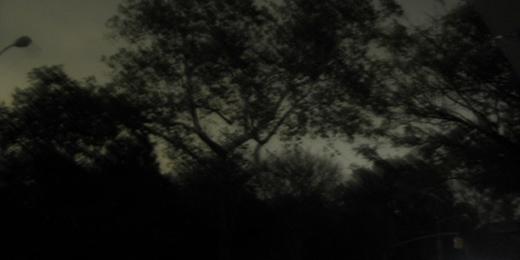 Foto: Flickr/edenpictures (CC 2.0)